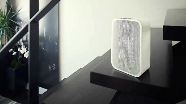 wireless speaker - Feature